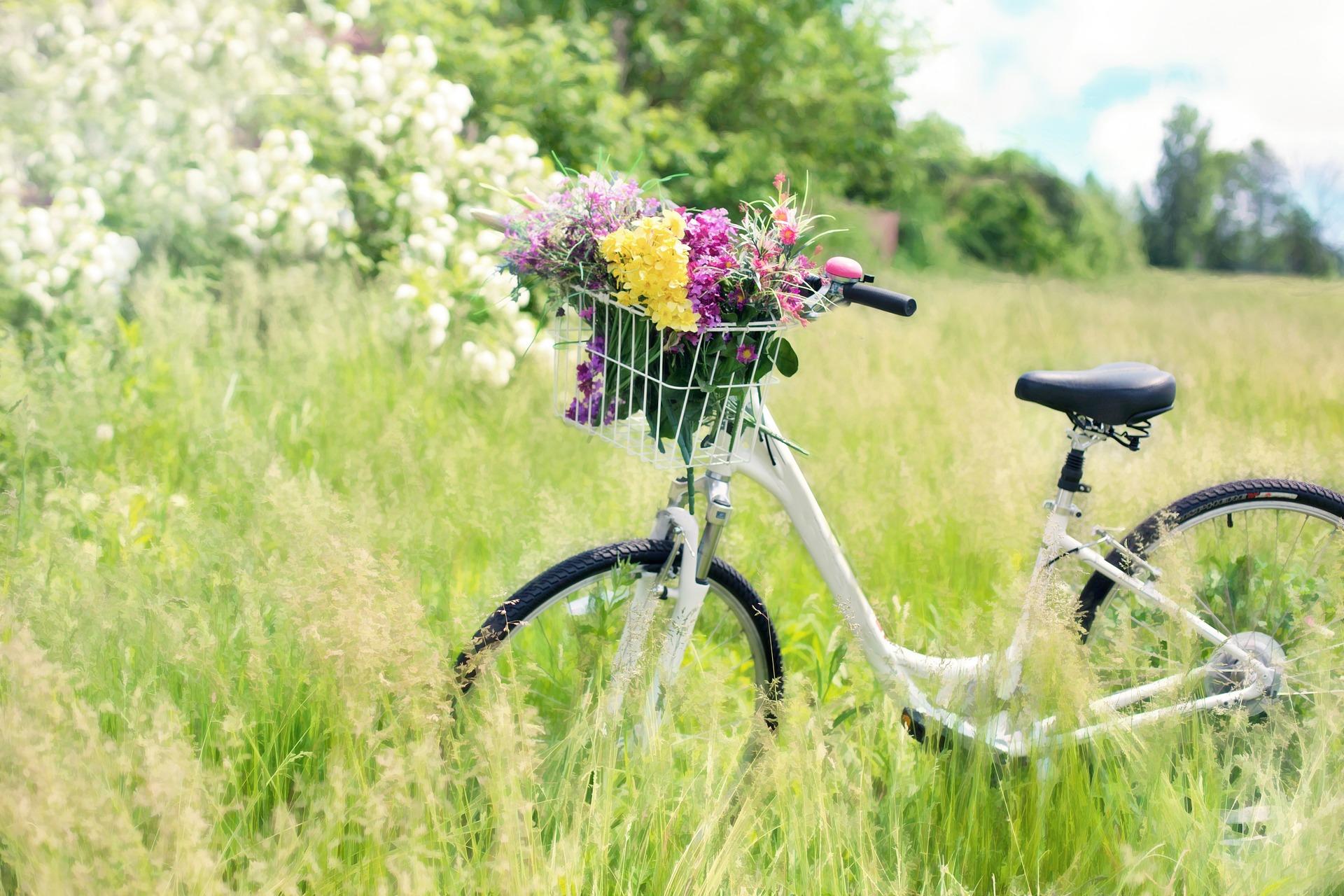 Milyen izmok működnek kerékpározás közben?